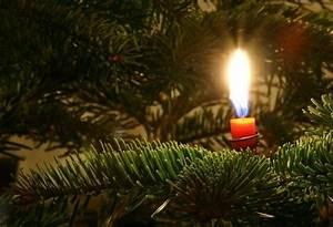 Weihnachtsbaum Wasser Geben : weihnachtsbaum kerzenhalter ideen und sicherheitstipps ~ Bigdaddyawards.com Haus und Dekorationen