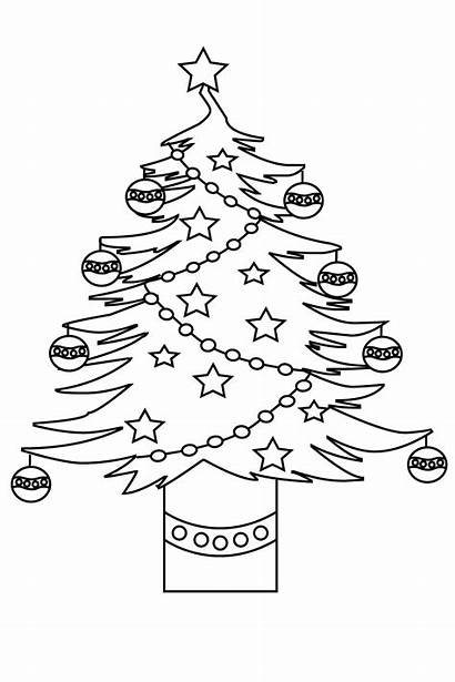 Tree Coloring Colouring Printable Adults Toddlers Printables
