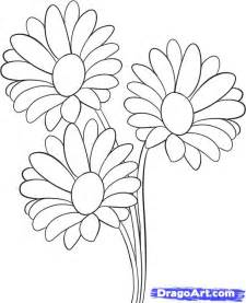 How to Draw Flower Drawings Steps