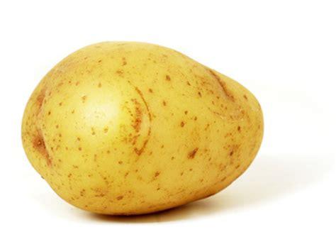 pomme de terre en chambre la pomme de terre riche en nutriments divers