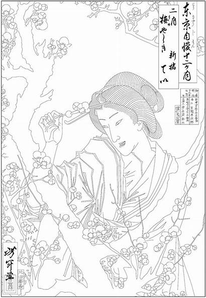 Coloring Japanese Garden Books Japan Tuttle Publishing