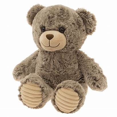 Teddy Bear Teddybear Buddy