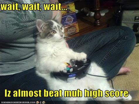 Funnypicturescatplaysvideogamejpg Photo By