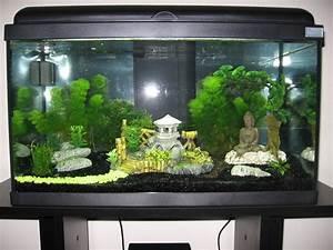 Idee Decoration Aquarium : d coration japonaise aquarium ~ Melissatoandfro.com Idées de Décoration