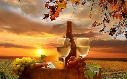 Wine Autumn Winery Grape Sunset Field Barrel