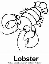 Lobster Coloring Outline Sea Google Drawing Ocean Template Cartoon Footprint Starfish Buoy Clipart Footprints Printable Lobsters Henna Crafts Line Animal sketch template