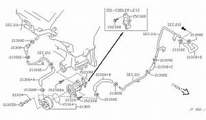 2003 Nissan Pathfinder Parts Diagram  U2022 Downloaddescargar Com