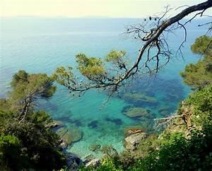 domaine du rayol jardin de la mediterranee rayol With jardin rayol canadel