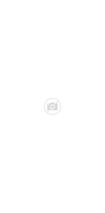 Serenity Princess Moon Sailor Deviantart Cat Fan