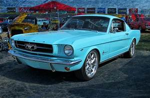 '65 Ford Mustang Fastback Photograph by Victor Montgomery
