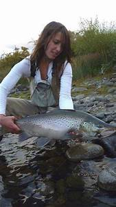 Pin by Drowning Worms on Trout fishing | Pinterest | Image ...