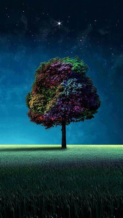 Colorful Tree 1080 Wallpapers 1920