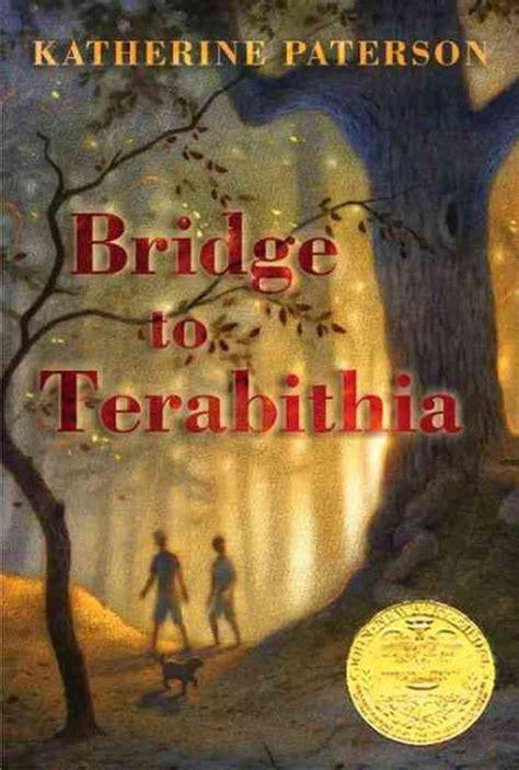 The Bridge A Novel reading set 3 contemporary realistic fiction raychel