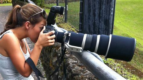 bird  wildlife photography gear guide  tips