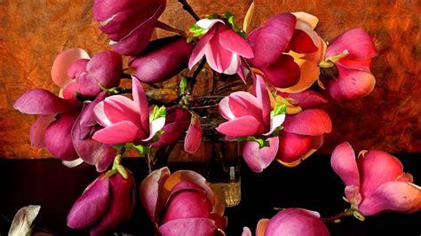 Pavasara ziedu noskaņa! - YouTube