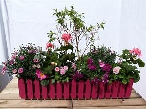 Blumenkübel Bepflanzen Sommer : sommer bepflanzte blumenk sten pflanzen und gartenzubeh r ~ Eleganceandgraceweddings.com Haus und Dekorationen