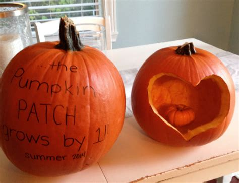 pumpkin re we re pregnant with joy punch debt in the face