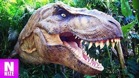 tyrannosaurus rex koenig der dinosaurier youtube