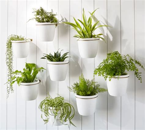 Big White Planters by Athens Wall Planter White Pottery Barn