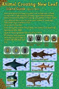 New Leaf Island Guide Animal Crossing New Leaf Animal
