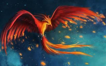 Wings Fire Backgrounds Wallpapers Desktop Flying Burning
