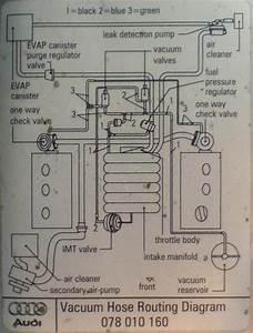 2000 A6 Avant Quattro Vacuum Lines  U0026 Reservoir