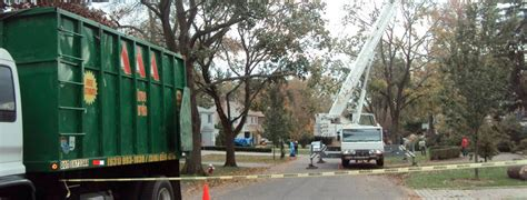 top  source  tree removal service long island