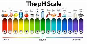 A pH scale on white background - Download Free Vectors ...