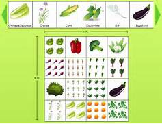 Garden Design And Planning Design Vegetable Garden Planner To Design A Veggie Garden That Works For You