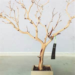 30 all tree jewelry holder jewelry organizer