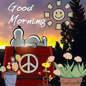 Good Morning Snoopy : good morning hippie snoopy quote pictures photos and images for facebook tumblr pinterest ~ Orissabook.com Haus und Dekorationen