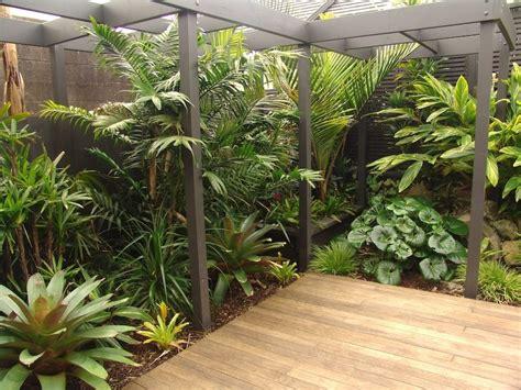tropical corner tropical garden design balinese garden tropical garden