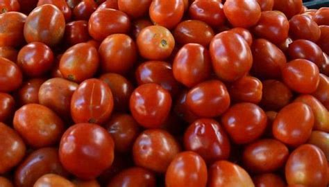 tomato prices hit rs kg mark  app offers