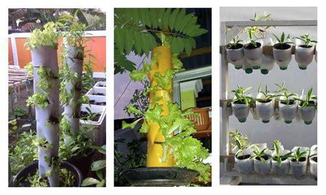 tips berkebun halaman sempit vertikal garden