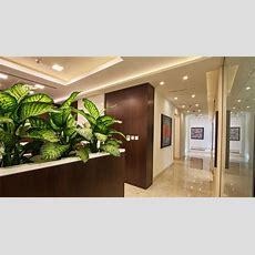 Massa Global Interior Design Company (dubai, Uae