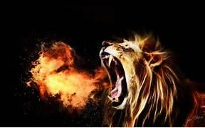 Lions Roar       Wallp...