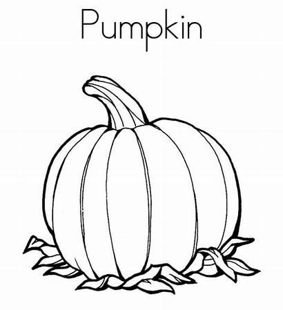 Pumpkin Coloring Leaves Noodle Twisty