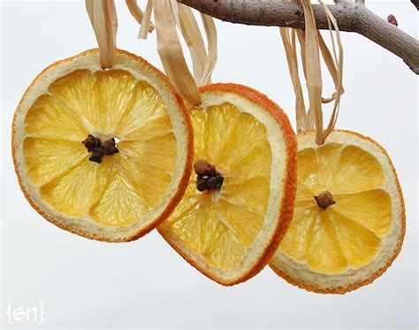 bright orange christmas ornaments citrus ornaments simply notable