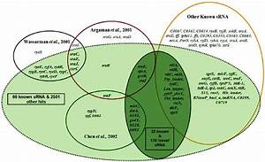 Enn Diagram Showing The Set Of Known E  Coli K