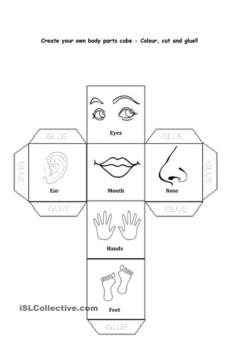 parts of the worksheets for kindergarten the best