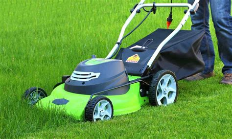 how much does a lawn cost will robots kill your lawn care business the lawn solutions