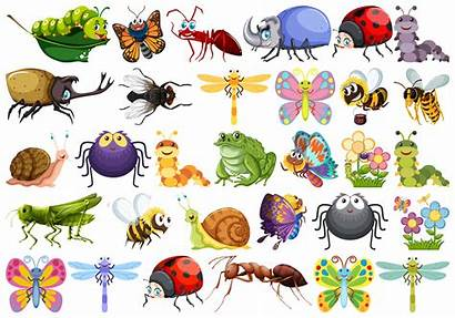 Insect Character Vector Freepik Clipart Graphics Save