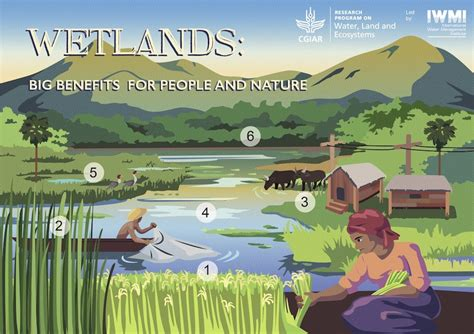 World Wetlands Day  Water Land And Ecosystems