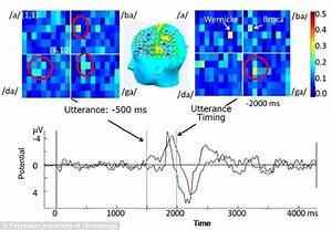 Mind-reading device invented by scientists | Daily Mail Online