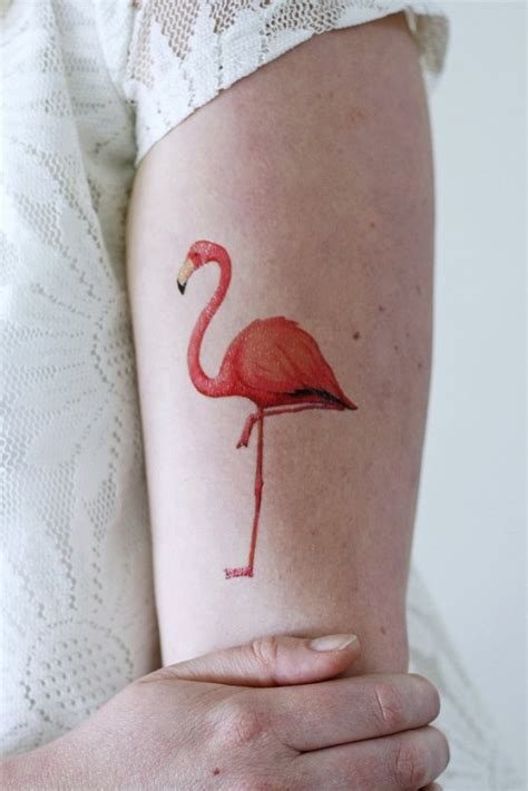 flamingo tattoos designs ideas  meaning tattoos