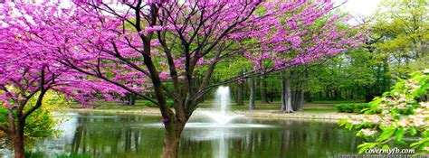 Spring Day At The Lake Facebook Covers, Spring Day At The