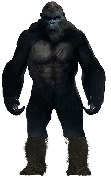His first appearance in a toho film was the 1962 godzilla film, king kong vs. King Kong MonsterVerse (2020) by leivbjerga on DeviantArt