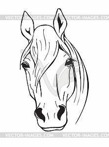 Pferdekopf Schwarz Weiß : schwarz wei pferdekopf vector bild ~ Watch28wear.com Haus und Dekorationen