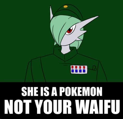 Waifu Memes - image 240219 waifu know your meme