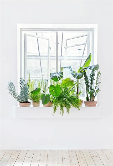 25 best ideas about window ledge on kitchen